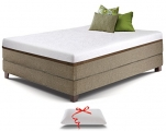 Live and Sleep Mattress Review